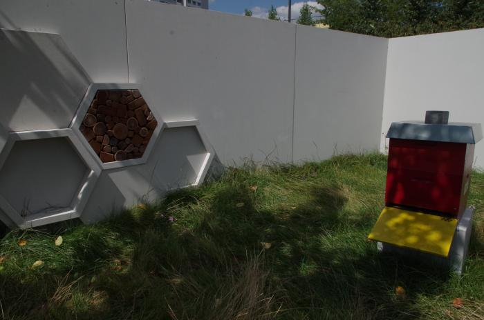 Iga in berlin marzahn for Bienenfreundlicher garten